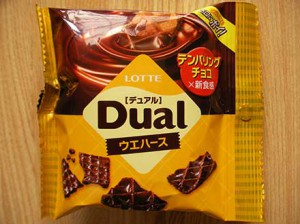 dual_wafers_1