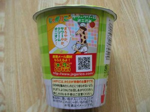 jyagariko_sour_cream_onion_2